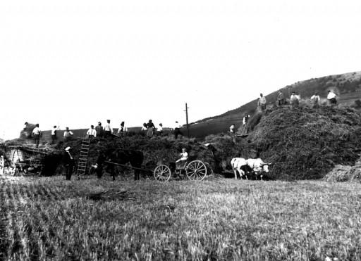 , he_0180, Stroheinfuhr, um 1917
