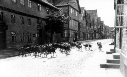 , li_0119, Stadtrundgang um 1930 Lange Straße, um 1930