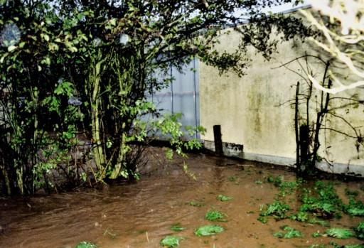 , li_0144, Hochwasser 1998, 1998