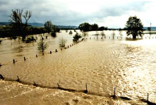 , li_0168, Hochwasser 1998, 1998