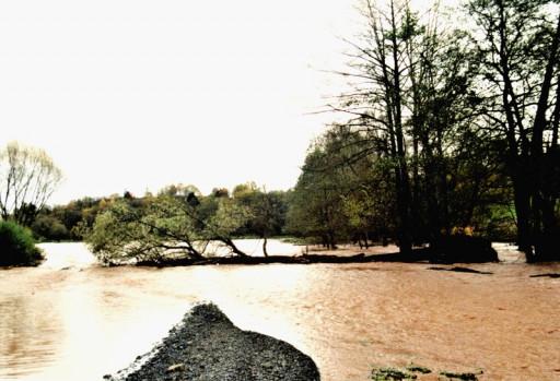 , li_0225, Hochwasser 1998, 1998