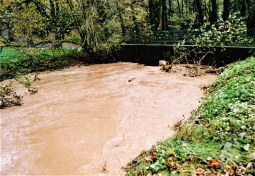 , li_0228/, Hochwasser 1998, 0014