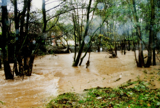 , li_0234, Hochwasser 1998, 0020