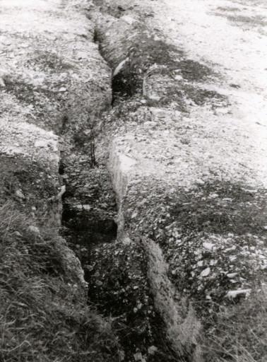 , li_1028, Zementwerk 1972, 1972