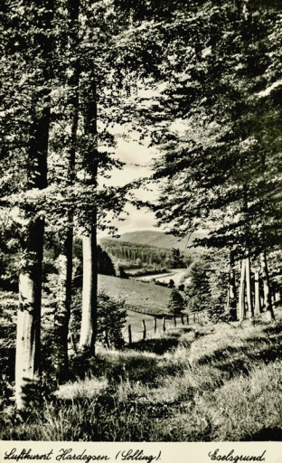 , li_1052, Transportweg durch den Eselsgrund, 1930