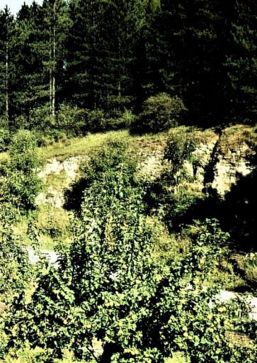 , sas_0020, Mühlenstieg, 1972